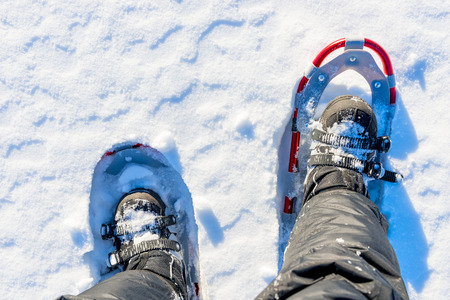 snowshoes: men legs are shod with snowshoes on the snow