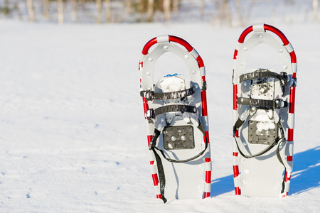 snowshoes: snowshoes are standing upright in the snow
