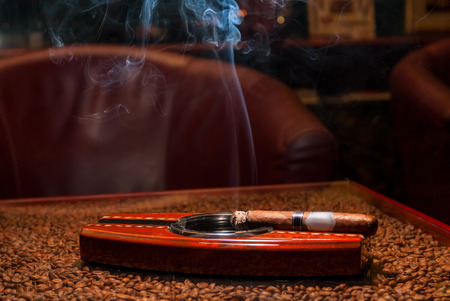pernicious habit: a smoking expensive cigars in the ashtray on the table
