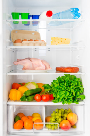 domestic refrigerator stocked with fresh and healthy food