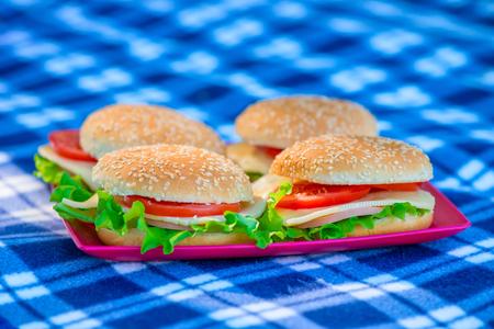 non urban: Four cheeseburger closeup on a plaid