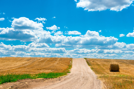 gold road: dusty road in the sloping Field of wheat of gold color Stock Photo