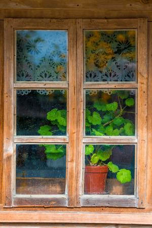 geranium bloem op een vensterbank in een dorpshuis Stockfoto