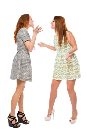 trifles: pretty girls arguing about trifles on a white background