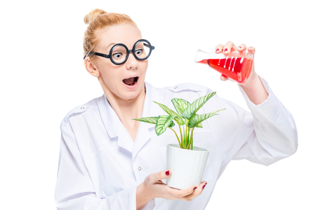 A crazy chemist watering a flower with a chemical substance from a bulb is insulated Stock Photo