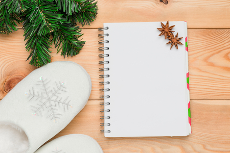warm winter slippers with snowflakes, a branch of a Christmas tree and a notepad for entries from above
