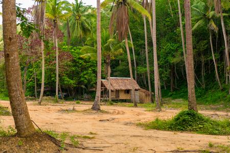 Houten bungalow onder hoge palmen in Thailand Stockfoto - 91891982