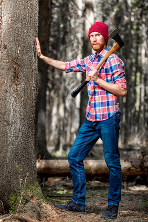 forester checks the condition of trees in the forest, touches the bark of a tree Stock Photo