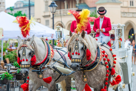 carts with horses for tourists on the main square of Krakow, Poland Stock Photo
