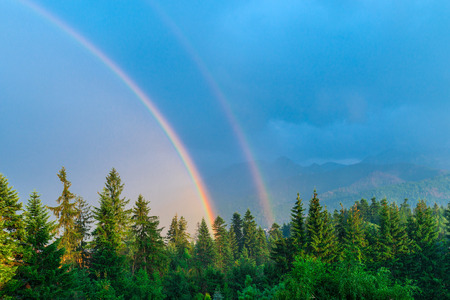 close-up after rain beautiful natural phenomenon of two rainbows on a background of mountains