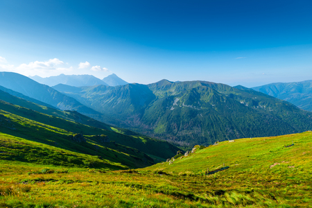 beautiful green mountain on a sunny summer day at dawn - the Tatra Mountains, Poland Kasprowy Wierch