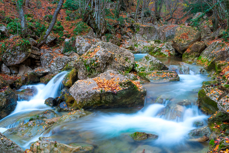 Moss-covered stones and flowing water in the mountains on an autumn afternoon, very beautiful nature
