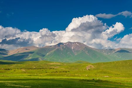 High glacier and green juicy field in summer, landscape of Armenia