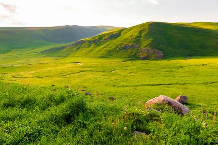 Green succulent mountains of Armenia landscape in June