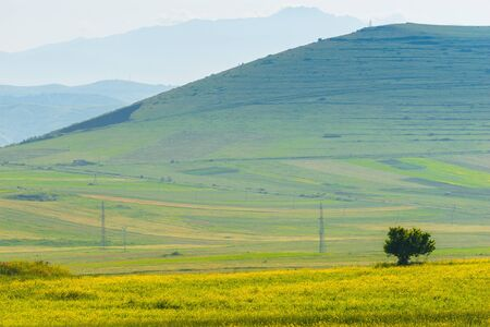 Tall green hill covered with lush grass, pasture in the mountains of Armenia