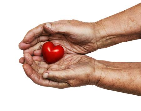 empatia: mujer de edad avanzada mantener corazón rojo en sus manos aisladas en blanco, símbolo de la atención y el amor