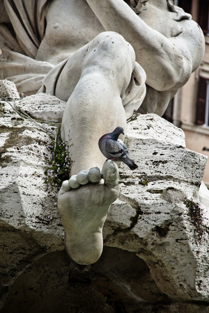 bernini: Fragment of the  Fountain of the Four Rivers  - leg with pigeon, Piazza Navona, Rome, Italy Stock Photo