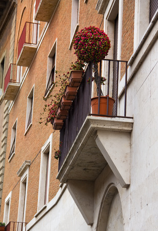 Beautiful decorative round tree with small red flowers is staying on balcony in Rome, Italy photo