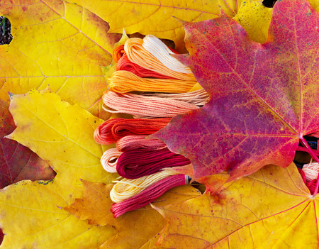 Colors of autumn, colorful mouline threads look like autumn leaves photo