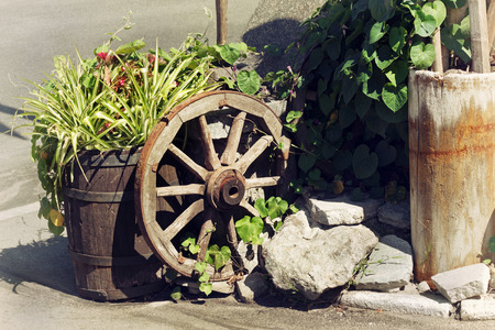 homeware: Rural scene with plants in pots and decorations wooden wheel