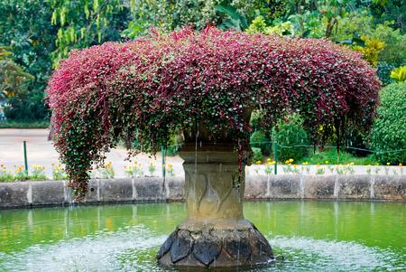 Beautiful fountain inside near entry to Royal Botanical Garden, Peradeniya, Kandy, Sri Lanka