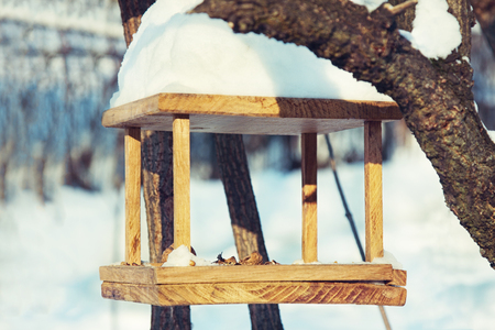 A handmade bird-feeder with crumbs and nuts,  winter scene.