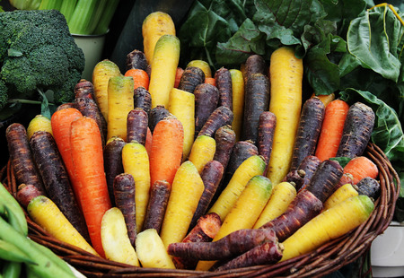 Different kinds of red, brown and yellow carrot in a basket at market. Stock Photo