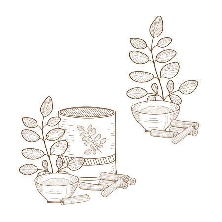 Moringa sketch Monochrome Background set