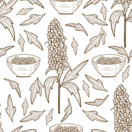 Quinoa Sketch seamless White background.