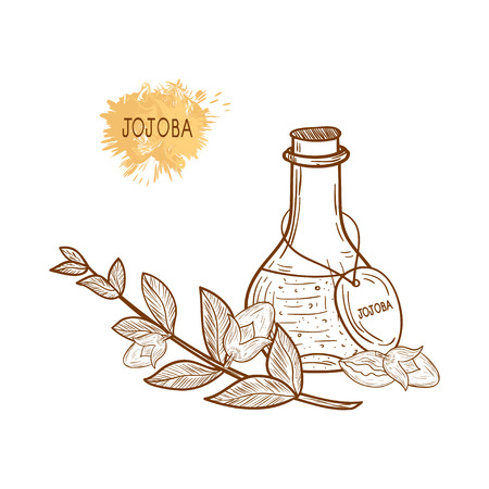 Jojoba oil in a flask.