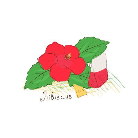 Hibiscus flower tea sketch. Flower and a tea bag. Illustration