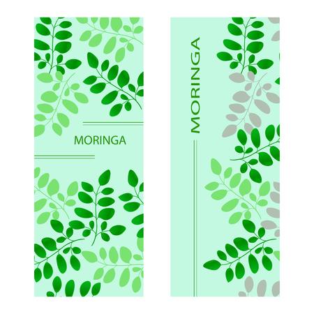 Moringa postcard Template Set.