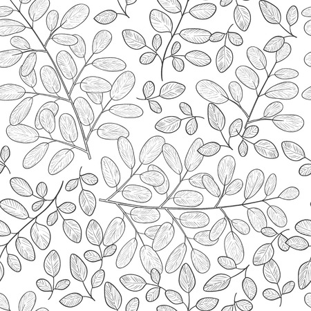 Moringa. Background, wallpaper, seamless. Sketch. Monophonic