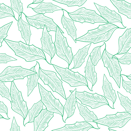 Leaves. Sketch. Circuit. On a white background a green drawing. Monochrome.