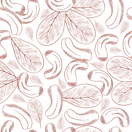 Cashew. Nut. Dried. Black and white image. Sketch. Background, wallpaper, texture, seamless. Monochrome
