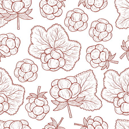 Cloudberry. Berry, leaves. Sketch. Monochrome. On a white background. Seamless.