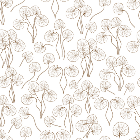 Gotu kola. Leaves, stem. Background, wallpaper, seamless. Sketch. Monochrome. Can be used for fabric, postcards.