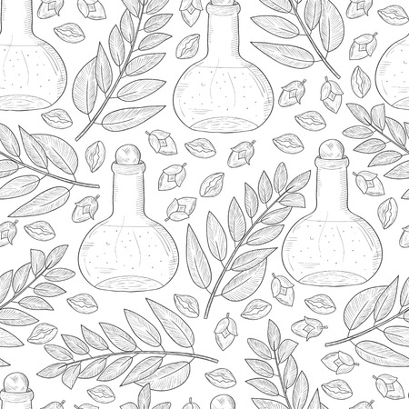 Jojoba. Branch, leaves, fruit. A flask with oil. Background, wallpaper, seamless. Sketch.