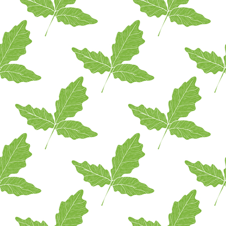 Boswellia. Green leaves on white background. Silhouette. Wallpaper, seamless.