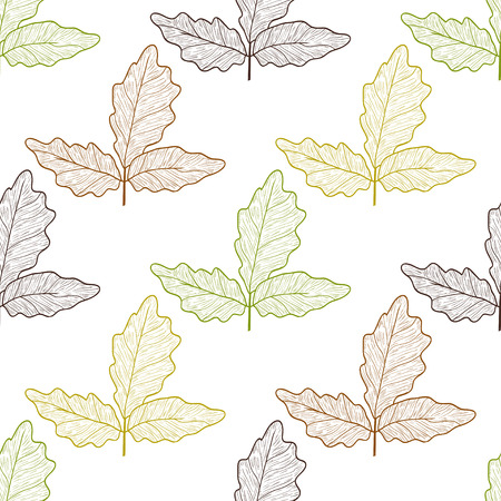 Boswellia. Leaves. Colorful outline on white background. Autumn. Sketch. Wallpaper, seamless. Stock Illustratie