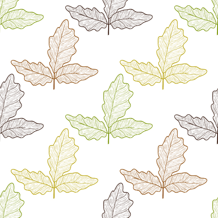 Boswellia. Leaves. Colorful outline on white background. Autumn. Sketch. Wallpaper, seamless. Stock Photo