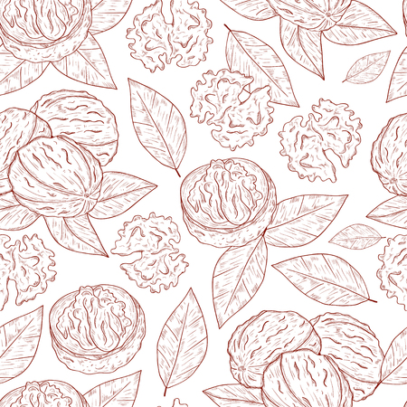 Walnut. Fruit, leaves. Background, wallpaper, seamless. Sketch. Monochrome.