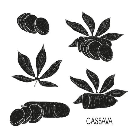 Cassava. Tuber, leaf. Black silhouette on white background. Set. Illustration