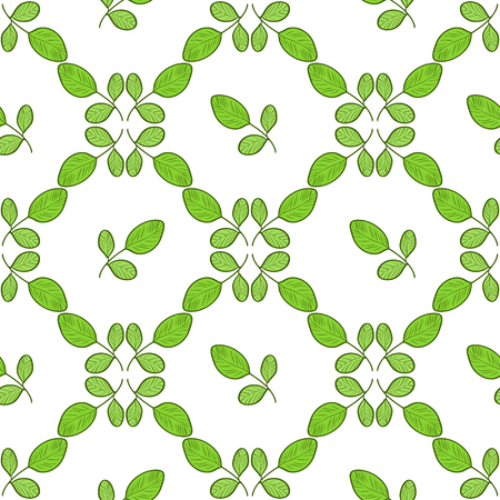 Moringa. Background, wallpaper, texture, seamless. Sketch. Color pattern. Tracery Illustration