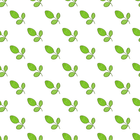 Moringa. Background, wallpaper, texture, seamless. Sketch. Color pattern Illustration