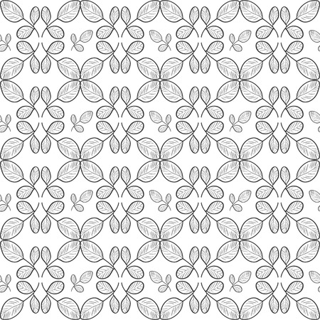 Moringa. Background, wallpaper, texture, seamless. Sketch. Tracery. Monophonic Illustration