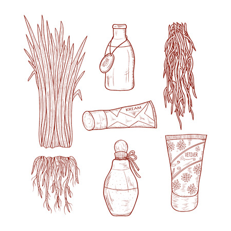 Vetiver. Leaves, root. Cosmetic means. Tube with cream, tincture, perfume. Sketch. Set. Monochrome Vector Illustration