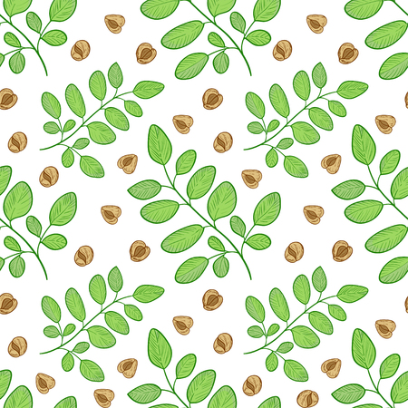 Moringa. A plant, a seed. Background, wallpaper, seamless. Sketch.
