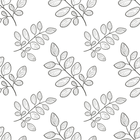 Moringa. Branch, leaves. Background, wallpaper, seamless. Sketch. Monophonic