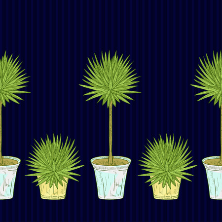 Yucca. Plant in the pot. On a dark blue background. Background, wallpaper, seamless. Sketch.